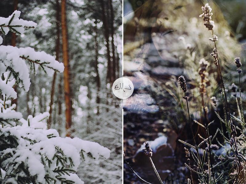 winterside (64) Kopie-horz