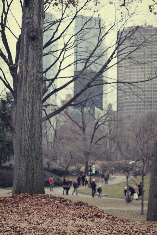 winterpark_9