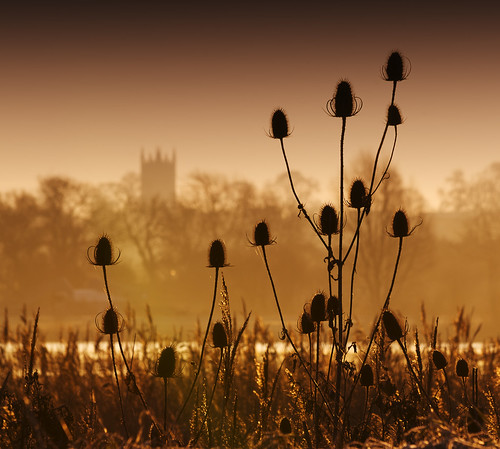 uk england church silhouette sunrise dawn northamptonshire teazles teazle titchmarsh aldwincle
