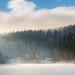 Winterwonderland by Chris Buhr