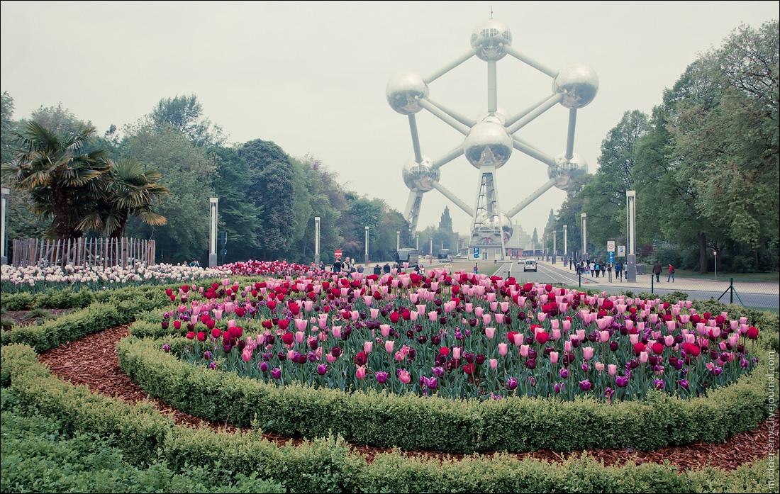 Brussels-2pt-1