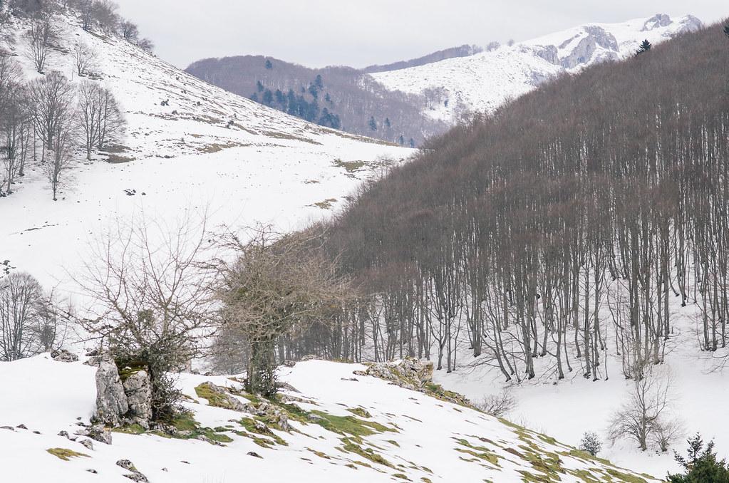 Barons et baronnies des Hautes Pyrénées  - carnet de voyage en france