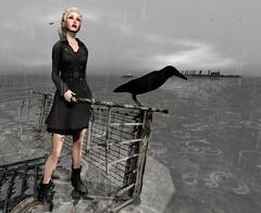 elemiah - the raven
