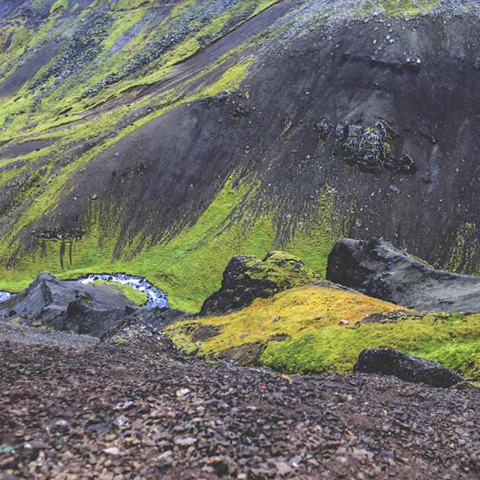 Iceland_Spiegeleule_August2014 022