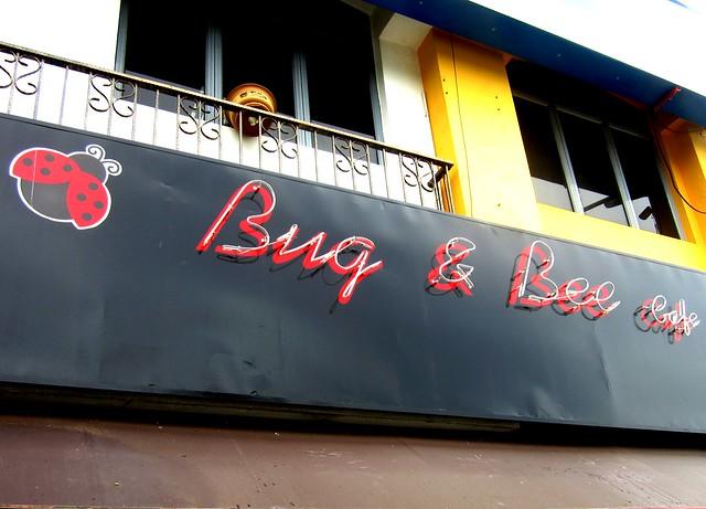 Bug & Bee