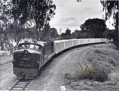 East African Railways - Nairobi, Kenya - diesel locomotive Nr. 9023 (English Electric, 1960/67) and a freight train near the golf club