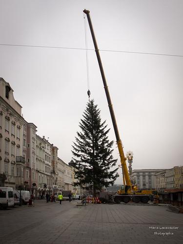Vorbereitungen für den Weihnachtsmarkt am Linzer Hauptplatz