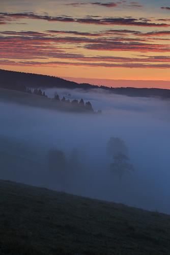 autumn mist black tree fog forest sunrise germany dawn valley baden schwarzwald badenwurttemberg urach wurttemberg hitechfilters vohrenbach urachtal hitechndgrad06hard