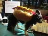Itzlween Hot Dog