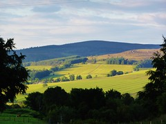 Near Alford, Aberdeenshire