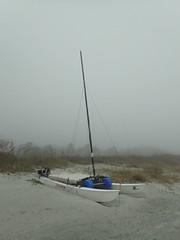 Foggy Day_001