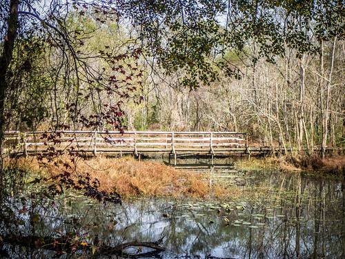 Lake Connestee-35