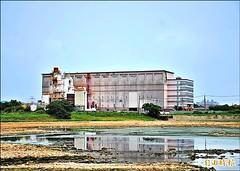 宇鴻公司前方滲眉埤池水成黑色,底泥也是黑的。邱奕統攝,圖片擷自自由時報。