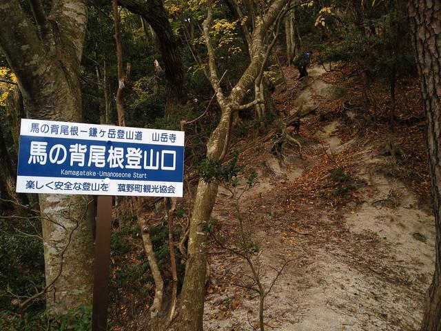 鎌ヶ岳 馬の背尾根登山口
