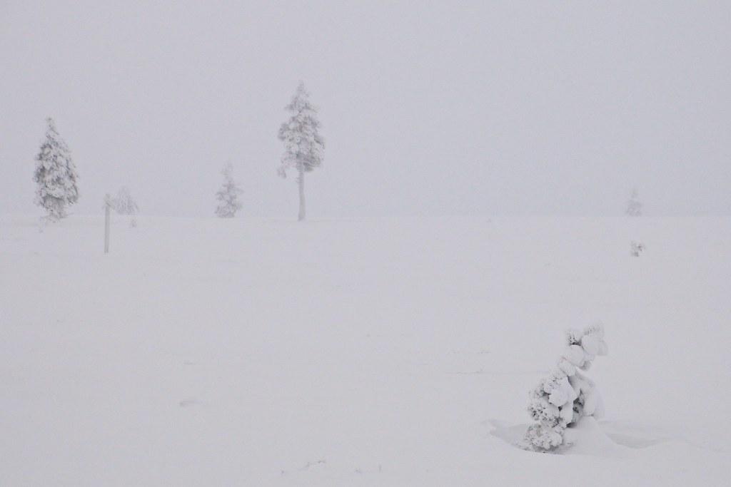 Finland016