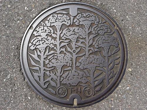 Shinminato Toyama, manhole cover 2 (富山県新湊市のマンホール2)