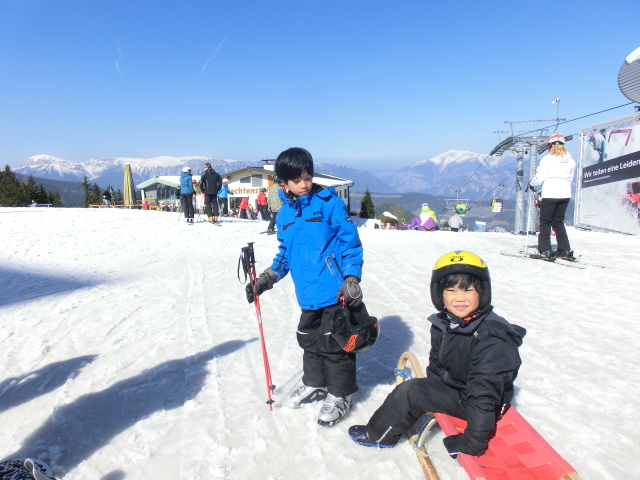 boys sled, skiing