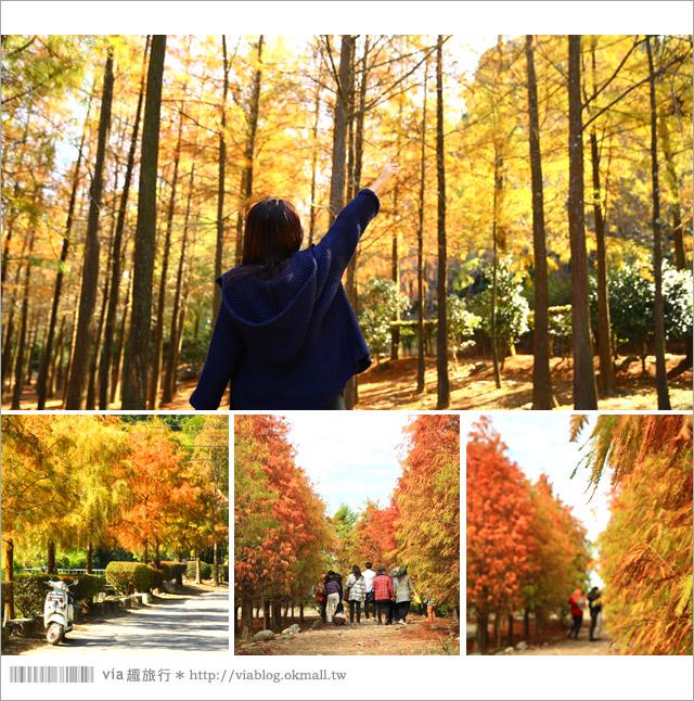 【台灣旅遊景點】Via版》2014全台人氣旅遊景點總回顧~十五個必去的旅遊新亮點!6