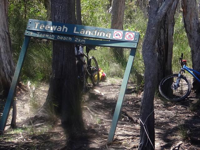 Teewah Landing