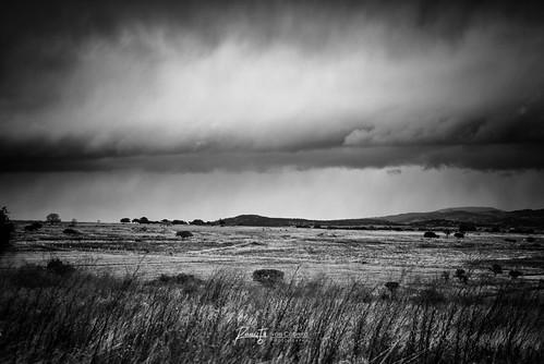 blackandwhite blancoynegro clouds landscape mexico photography carretera paisaje nubes campo wilderness fotografia durango