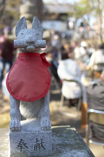 20160508手宮公園の桜_09