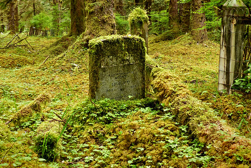 canada cemetery grave lumix moss rainforest outdoor britishcolumbia headstone haidagwaii cans2s fz200