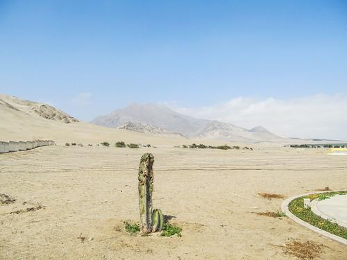 Las Huacas del Sol y de la Luna: les alentours
