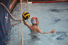 water & ball sports, water polo, swimming, sports, recreation, outdoor recreation, leisure, water sport, ball game, athlete,