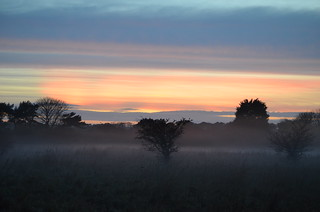 Autumn Sunset Mist, Archerfield, Scotland - Nov 2014