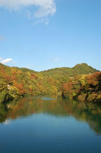 ★藤野の秋と整体