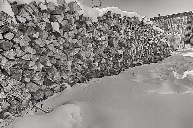 Outlasting Winter