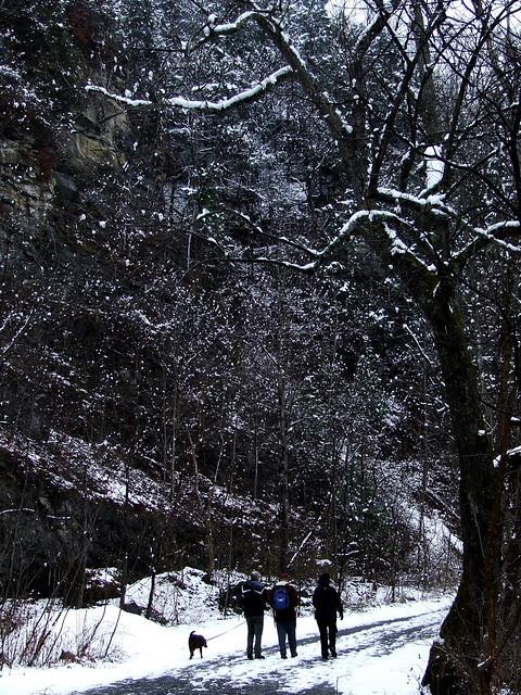 Spring Creek Canyon walkers