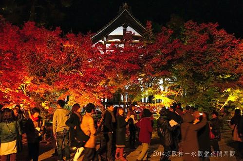 2014京阪神-永觀堂夜間拜觀2293_001