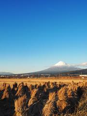 A wintry scene, Mount Fuji. 冬景色 富士山