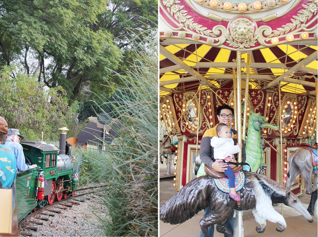 family day at the santa ana zoo