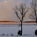 Dawn on New Year Eve Day 20141231 by Woody Woodsman