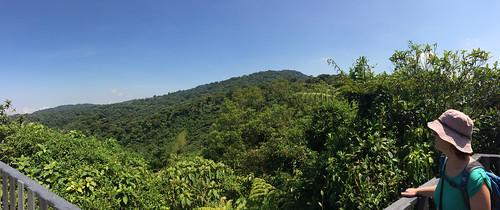 La Réserve de Monteverde: la Ventana (fenêtre)