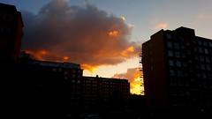 Markland sunset