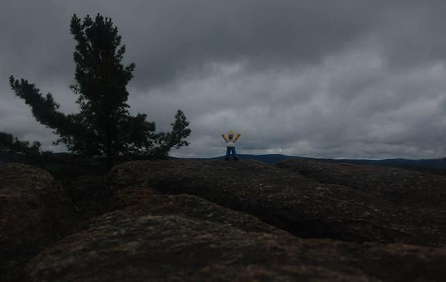 Homer Scales the Peak