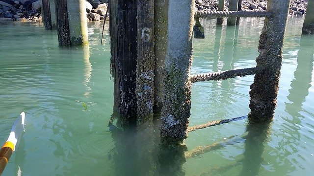 High tide measure
