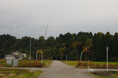 IMGP3337