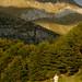 Naturetrek client enjoying the view (Sergio Padura)