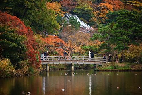 japan ngc kanagawa kamakurayokohama flickrtravelaward hasetemplesankeinpark