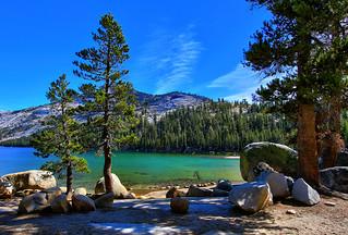 Beautiful Tenaya Lake