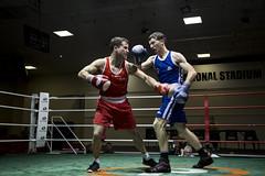 striking combat sports, boxing ring, professional boxing, contact sport, sports, combat sport, shoot boxing, kickboxing, strike, punch, boxing,