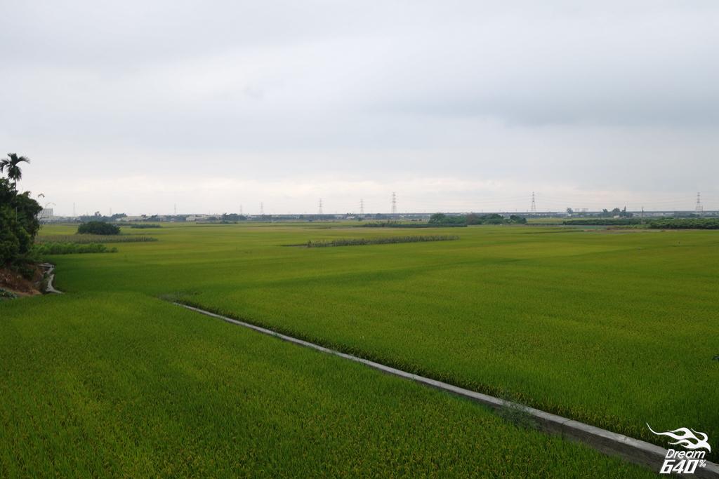 田中馬拉松_Tianzhong Marathon088