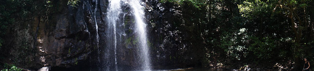 Tropic dark falls