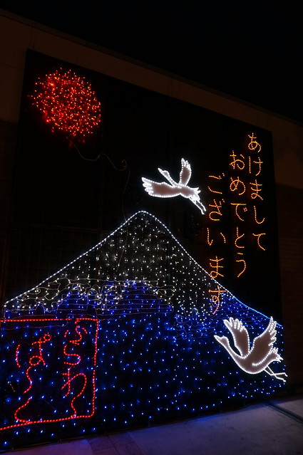 Flower Fantasy 2015 illumination at Ashikaga Flower Park 03