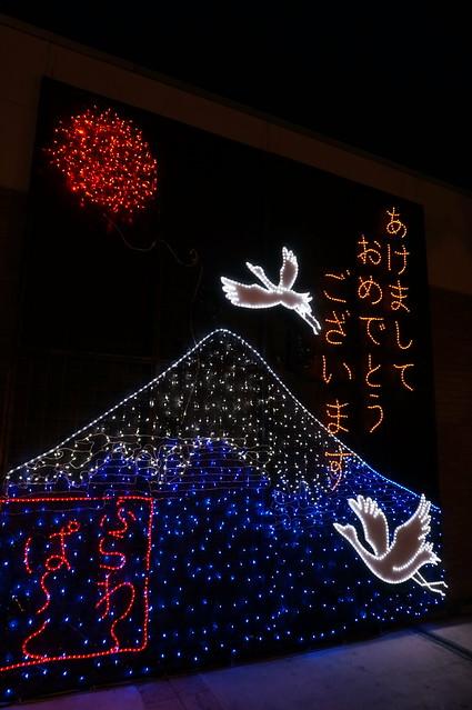 Flower Fantasy 2015 illumination at Ashikaga Flower Park 03