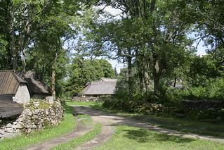 Koguva village